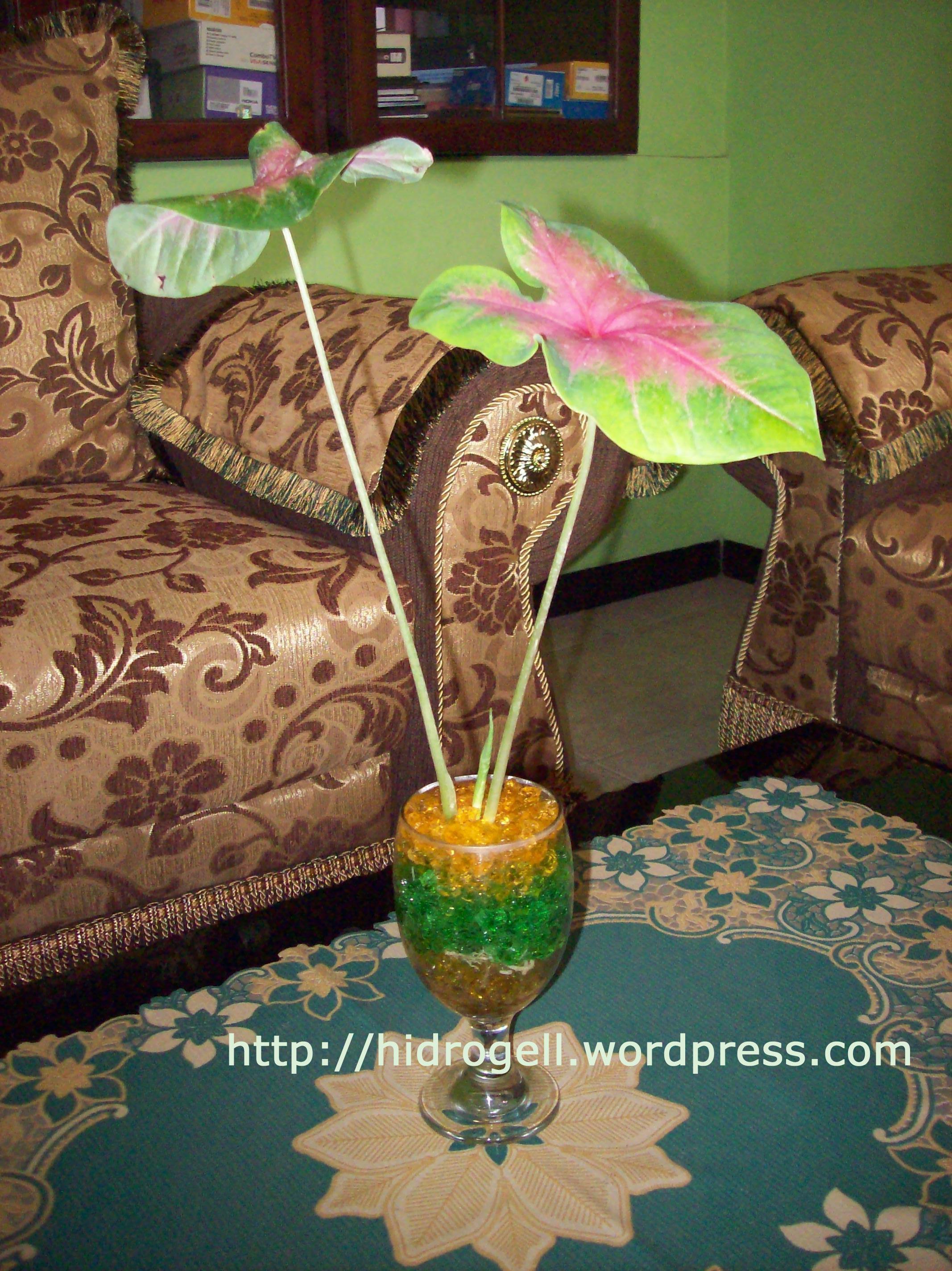 Ide Desain Vas Bunga Ruang Tamu Masa Kini