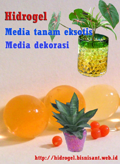 jual hidrogel media tanam