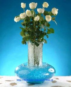 hidrogel sebagai suvenir dan oleh oleh