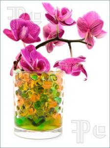hidrogel bunga potong